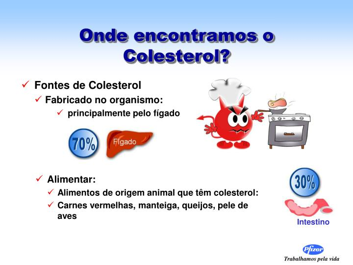 Onde encontramos o Colesterol?