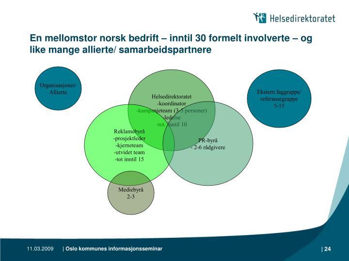 En mellomstor norsk bedrift – inntil 30 formelt involverte – og like mange allierte/ samarbeidspartnere