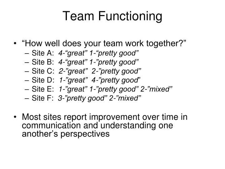 Team Functioning