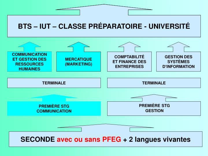 BTS – IUT – CLASSE PRÉPARATOIRE - UNIVERSITÉ