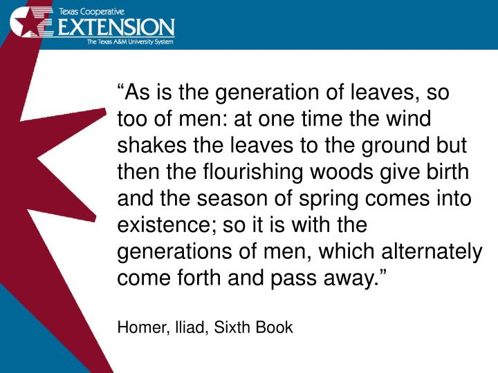 """As is the generation of leaves, so too of men: at one time the wind shakes the leaves to the grou..."