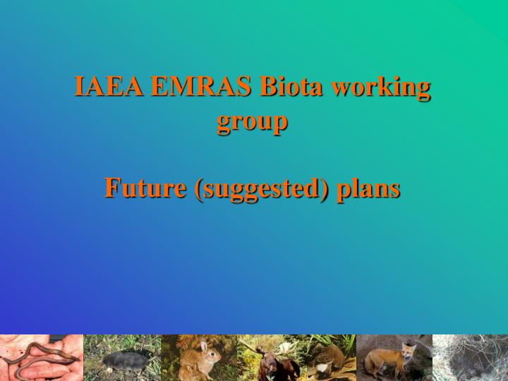 Iaea emras biota working group future suggested plans