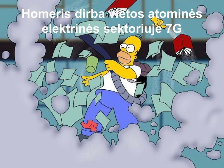 Homeris dirba vietos atominės elektrinės sektoriuje 7G