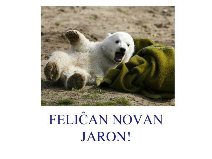 FELIĈAN NOVAN JARON!