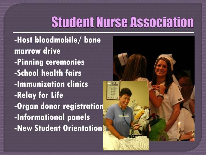 Student Nurse Association