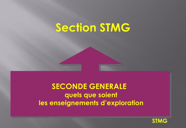 Section STMG
