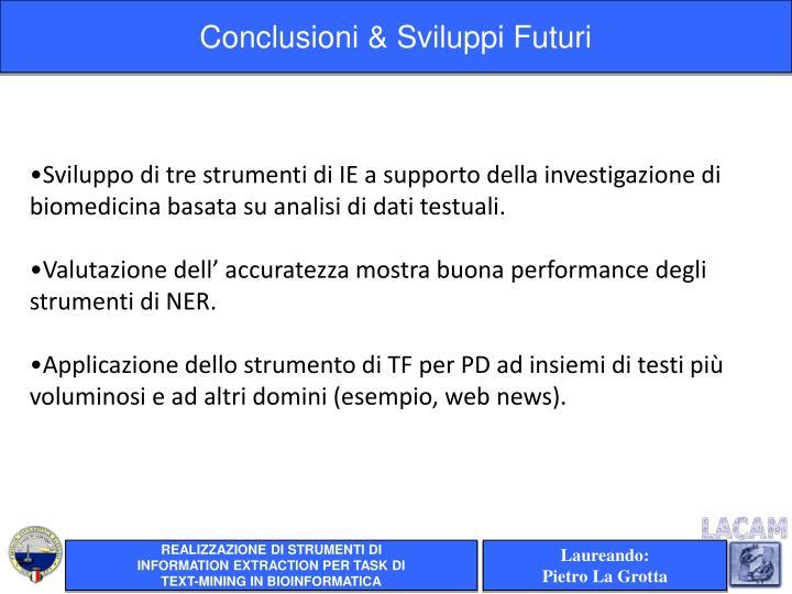 Conclusioni & Sviluppi Futuri