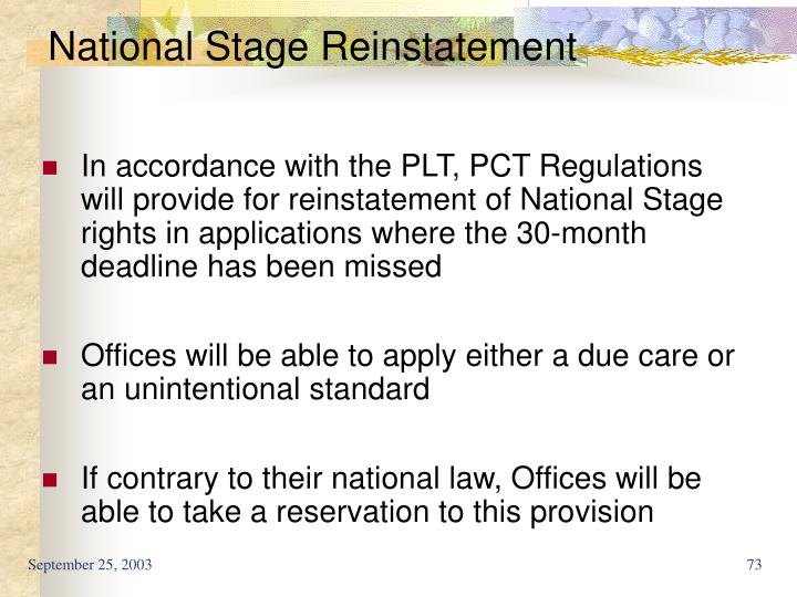 National Stage Reinstatement