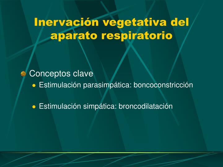 Inervación vegetativa del aparato respiratorio