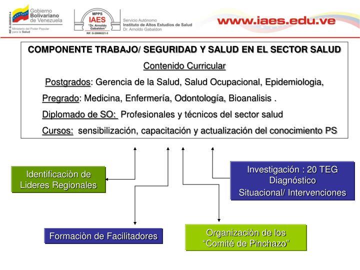 COMPONENTE TRABAJO/ SEGURIDAD Y SALUD EN EL SECTOR SALUD