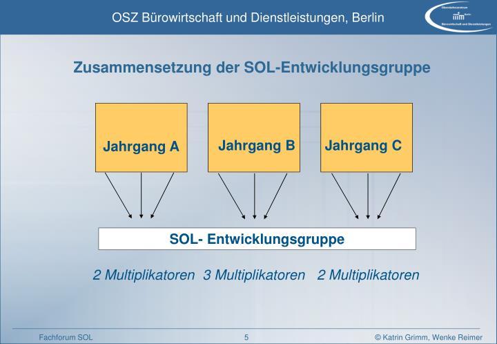 Zusammensetzung der SOL-Entwicklungsgruppe