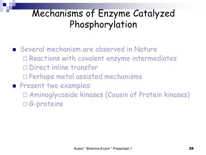 Mechanisms of Enzyme Catalyzed Phosphorylation
