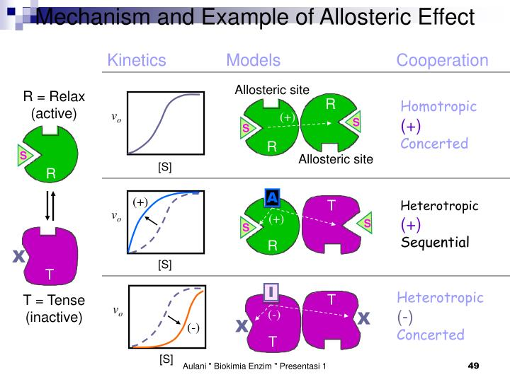 Mechanism and Example of Allosteric Effect