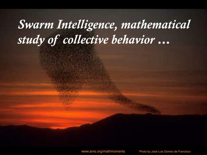 Swarm Intelligence, mathematical study of collective behavior …