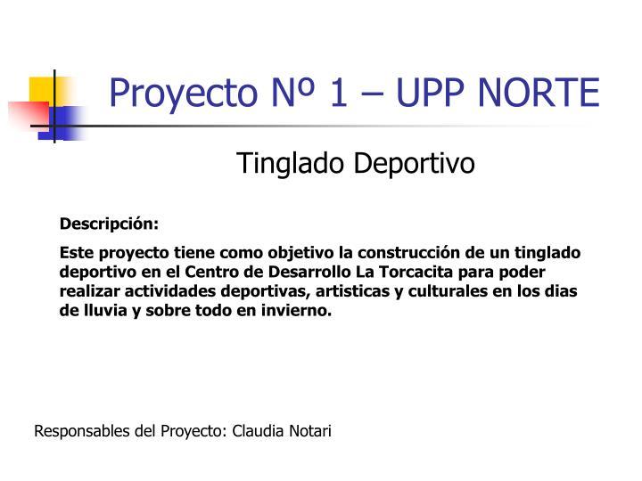 Proyecto Nº 1 – UPP NORTE
