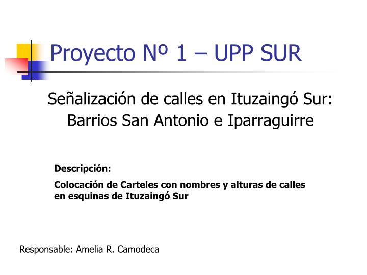 Proyecto Nº 1 – UPP SUR