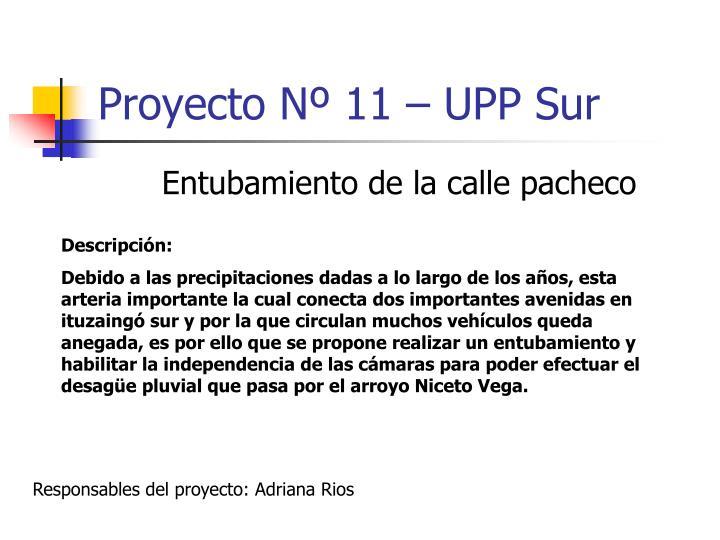 Proyecto Nº 11 – UPP Sur