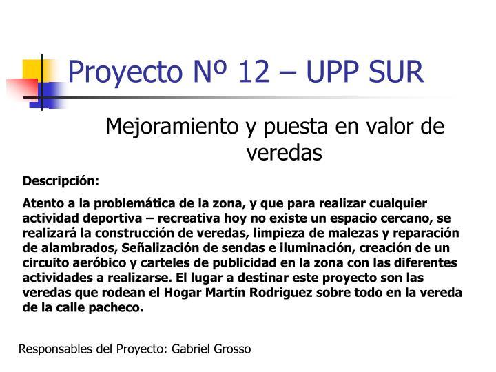 Proyecto Nº 12 – UPP SUR