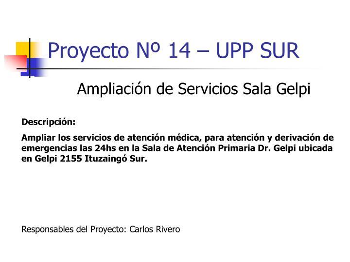 Proyecto Nº 14 – UPP SUR
