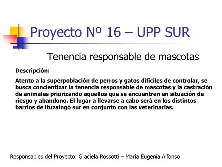 Proyecto Nº 16 – UPP SUR