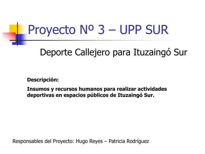 Proyecto Nº 3 – UPP SUR