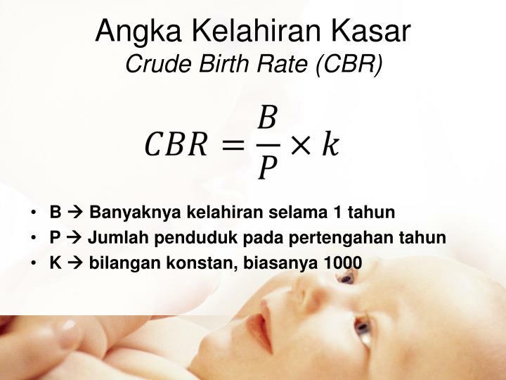 Angka Kelahiran Kasar