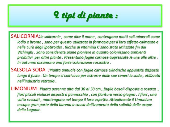 I tipi di piante :