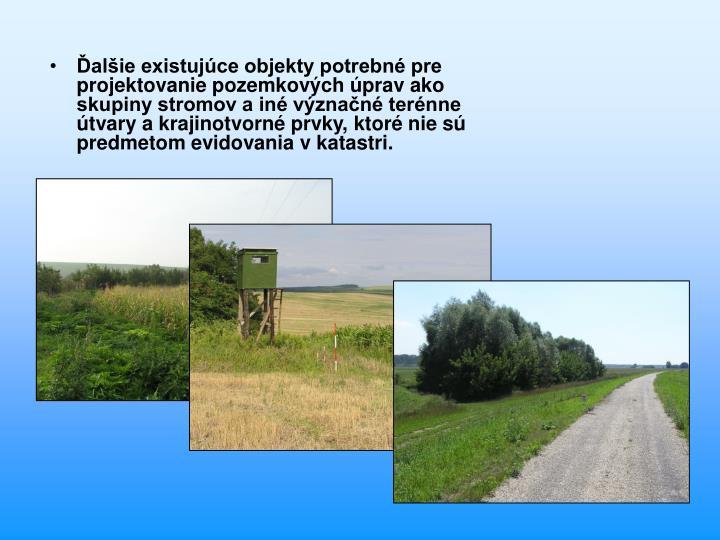 Ďalšie existujúce objekty potrebné pre projektovanie pozemkových úprav ako skupiny stromov a iné význačné terénne útvary a krajinotvorné prvky, ktoré nie sú predmetom evidovania v katastri.