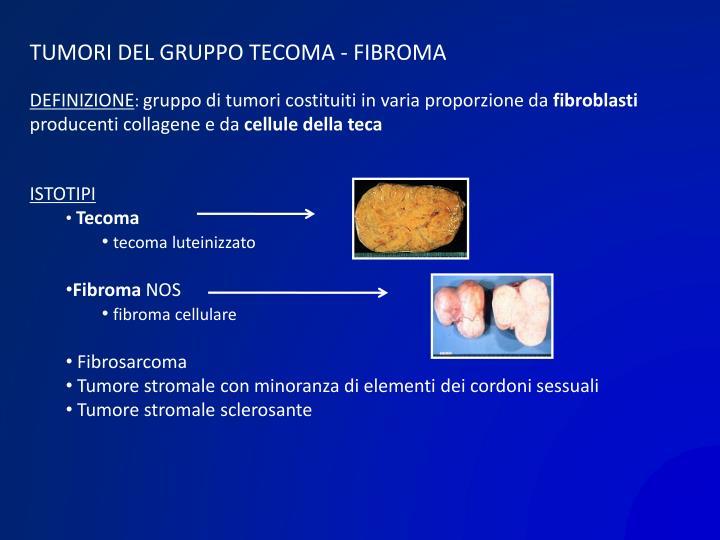 TUMORI DEL GRUPPO TECOMA - FIBROMA