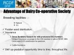 advantage of dairy co operative society1