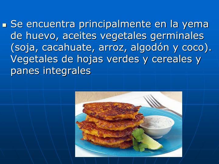 Se encuentra principalmente en la yema de huevo, aceites vegetales germinales (soja, cacahuate, arroz, algodón y coco). Vegetales de hojas verdes y cereales y panes integrales