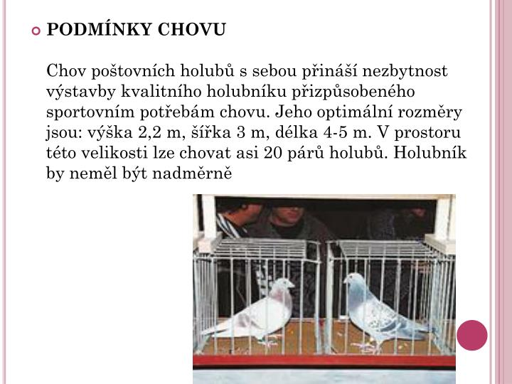 PODMNKY CHOVU