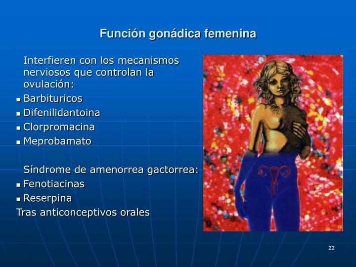 Función gonádica femenina
