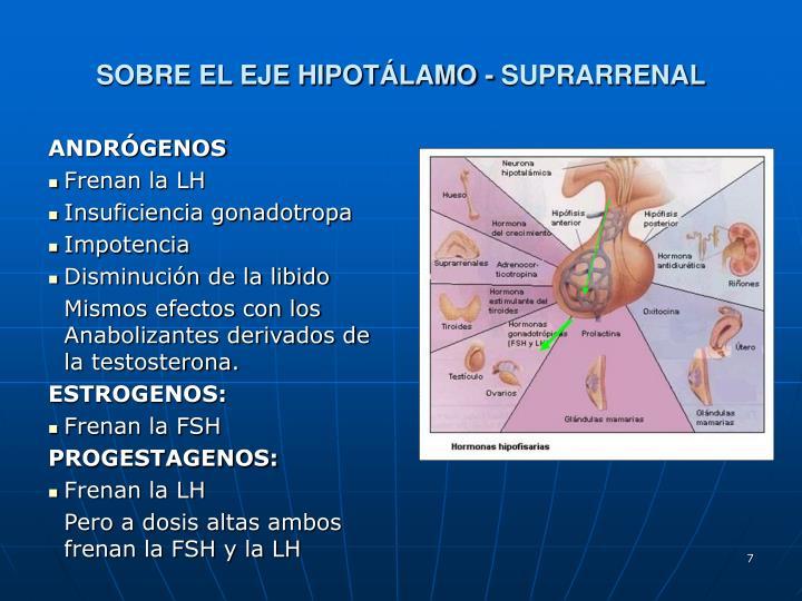SOBRE EL EJE HIPOTÁLAMO - SUPRARRENAL