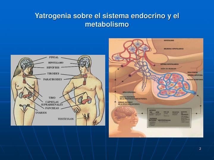 Yatrogenia sobre el sistema endocrino y el metabolismo