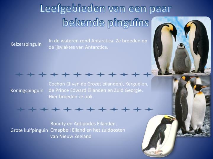 Leefgebieden van een paar bekende pinguïns