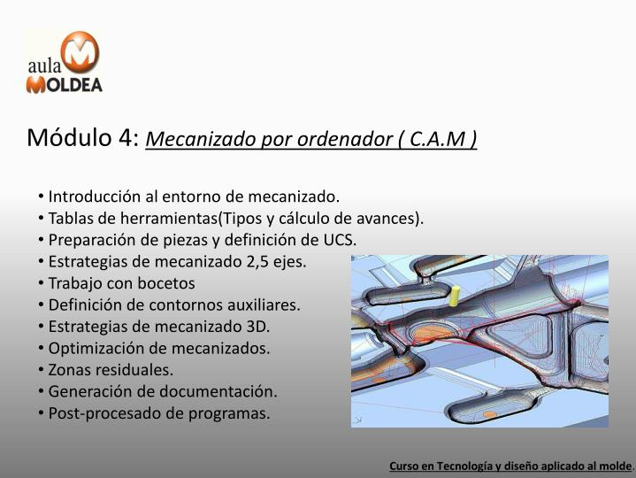 Módulo 4: