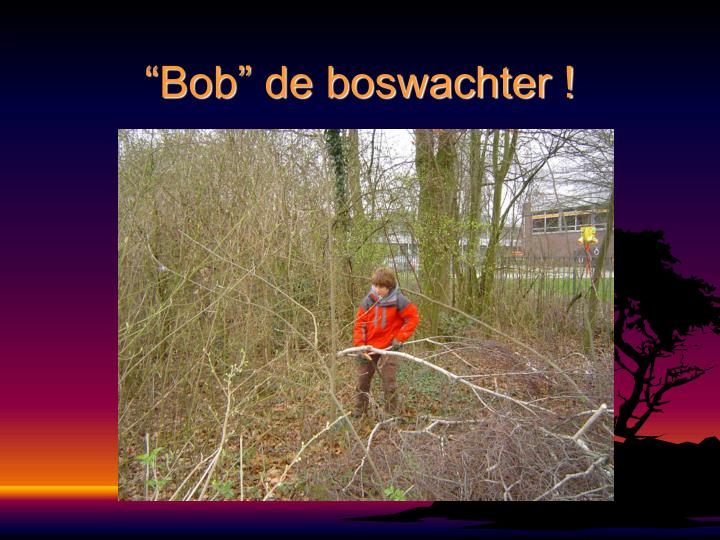 """""""Bob"""" de boswachter !"""