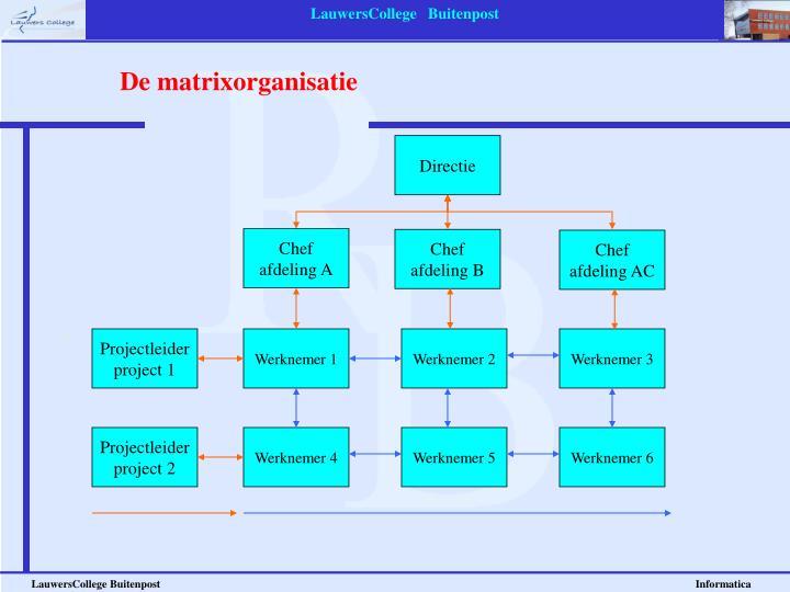 De matrixorganisatie
