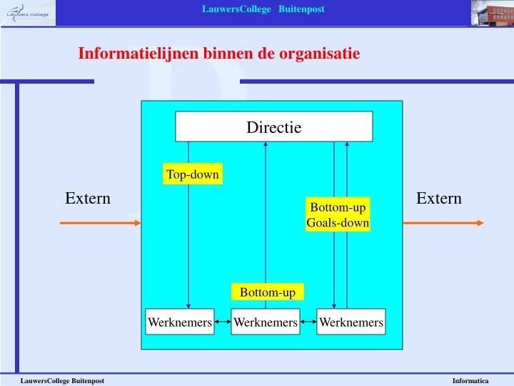 Informatielijnen binnen de organisatie