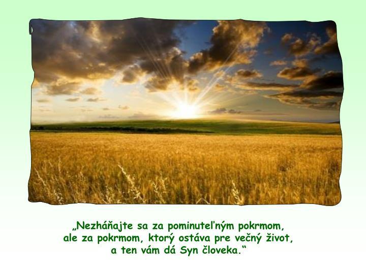 Nezhajte sa za pominutenm pokrmom,                           ale za pokrmom, ktor ostva pre ven ivot,                       a ten vm d Syn loveka.