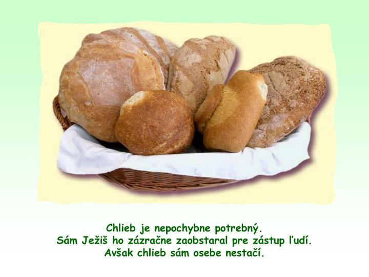 Chlieb je nepochybne potrebn.                                            Sm Jei ho zzrane zaobstaral pre zstup ud.                  Avak chlieb sm osebe nesta.
