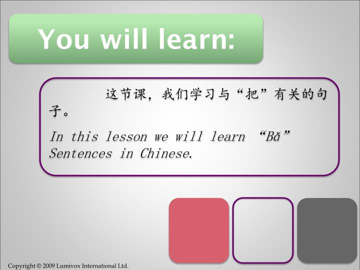 You will learn: