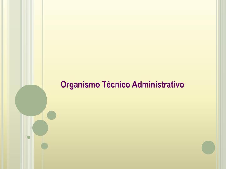Organismo Técnico Administrativo