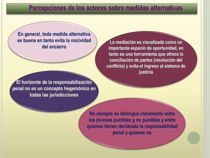 Percepciones de los actores sobre medidas alternativas
