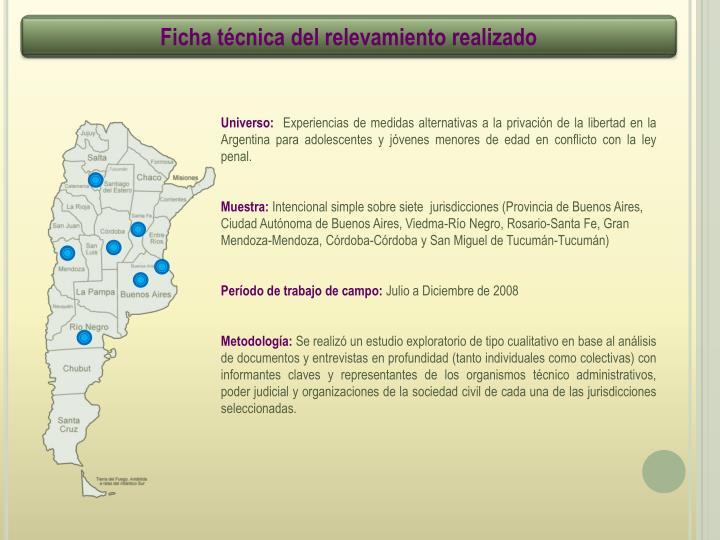 Ficha técnica del relevamiento realizado