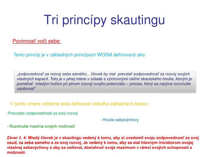 Tri princípy skautingu