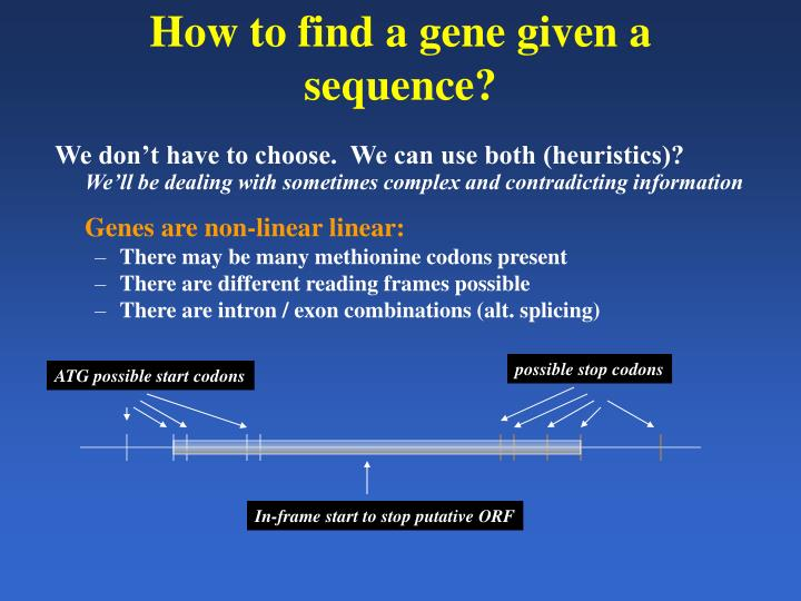 How to find a gene given a sequence?