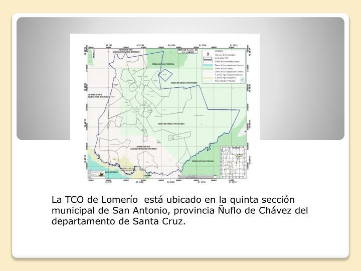 La TCO de Lomerío  está ubicado en la quinta sección municipal de San Antonio, provincia Ñuflo de Chávez del  departamento de Santa Cruz.