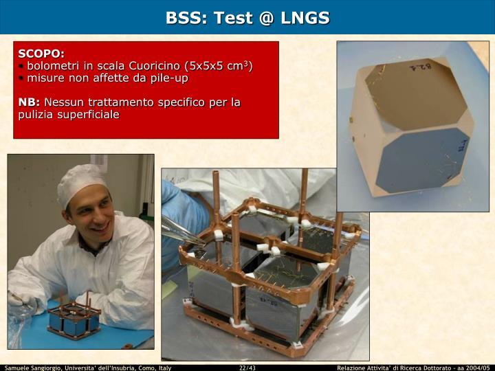 BSS: Test @ LNGS